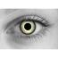 Baby Eyes Blue