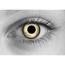 Baby Eyes Grey
